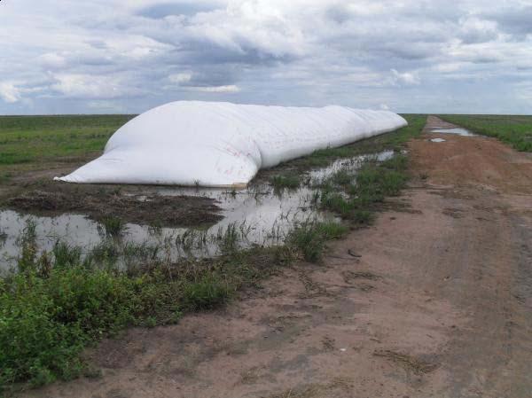 Armazenagem agrícola